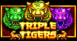 รีวิวเกมสล็อต เสือ 3 สี Triple Tigers